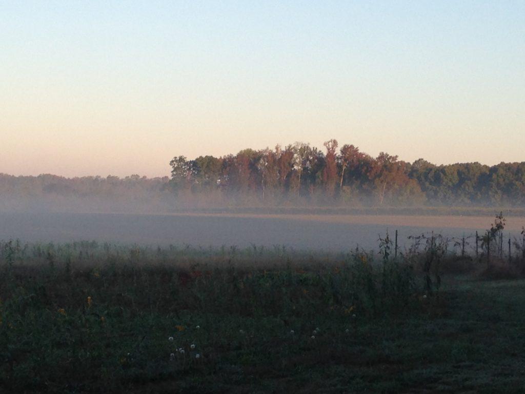 Photo Oct 29, 8 04 16 AM