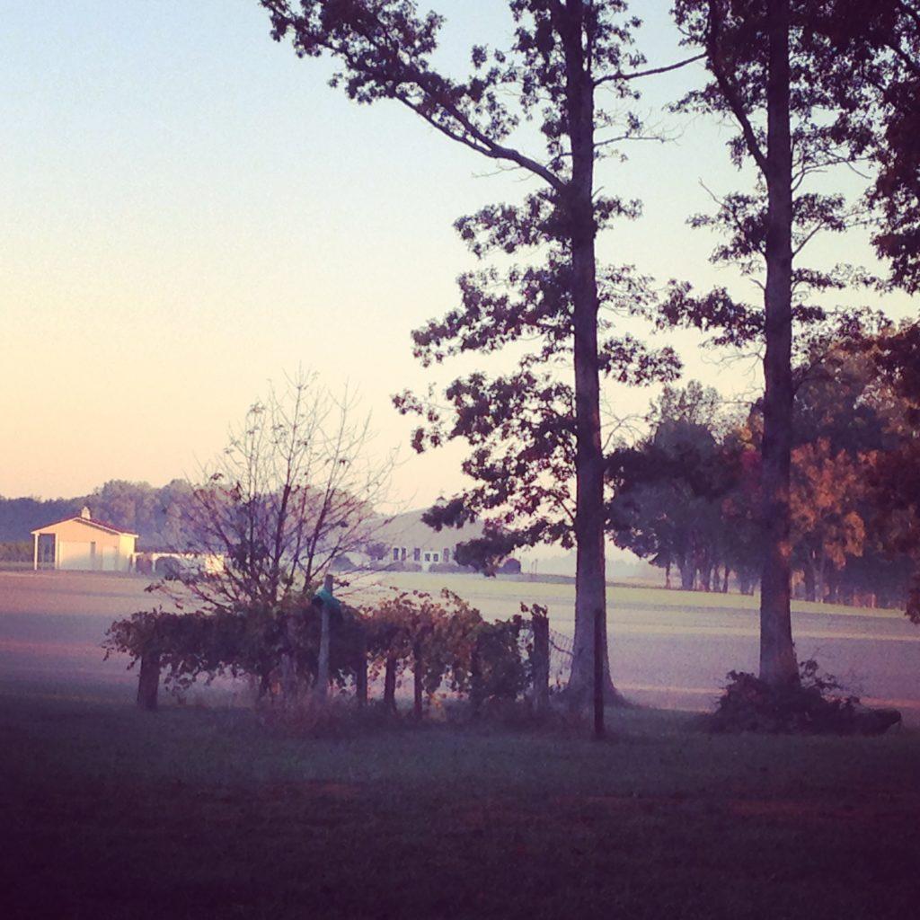 Photo Oct 29, 8 04 30 AM
